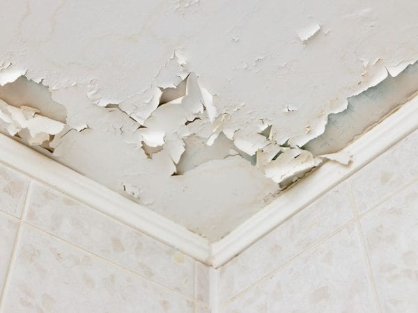 Common Reasons Why Paint Cracks, Peels, or Bubbles